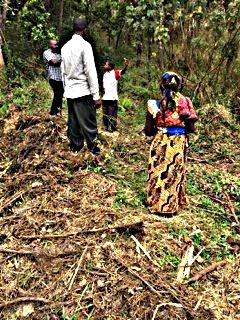 Shule ya Tanga Borehole and Water System Project - Tanzania