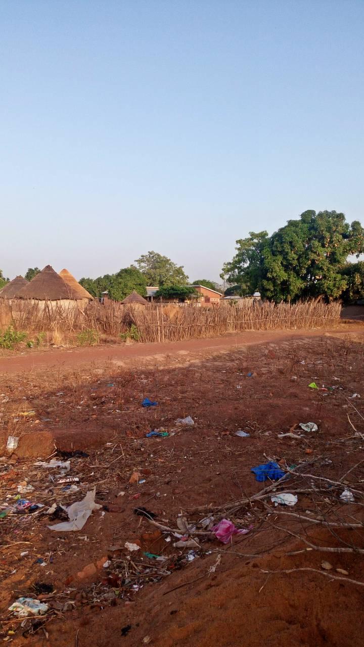 Djelibakoro Well Project - Guinea