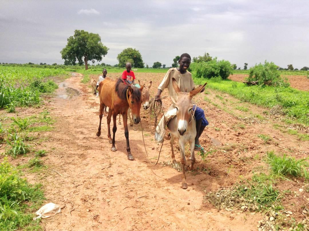 Mbentinky, population of 500, Senegal.