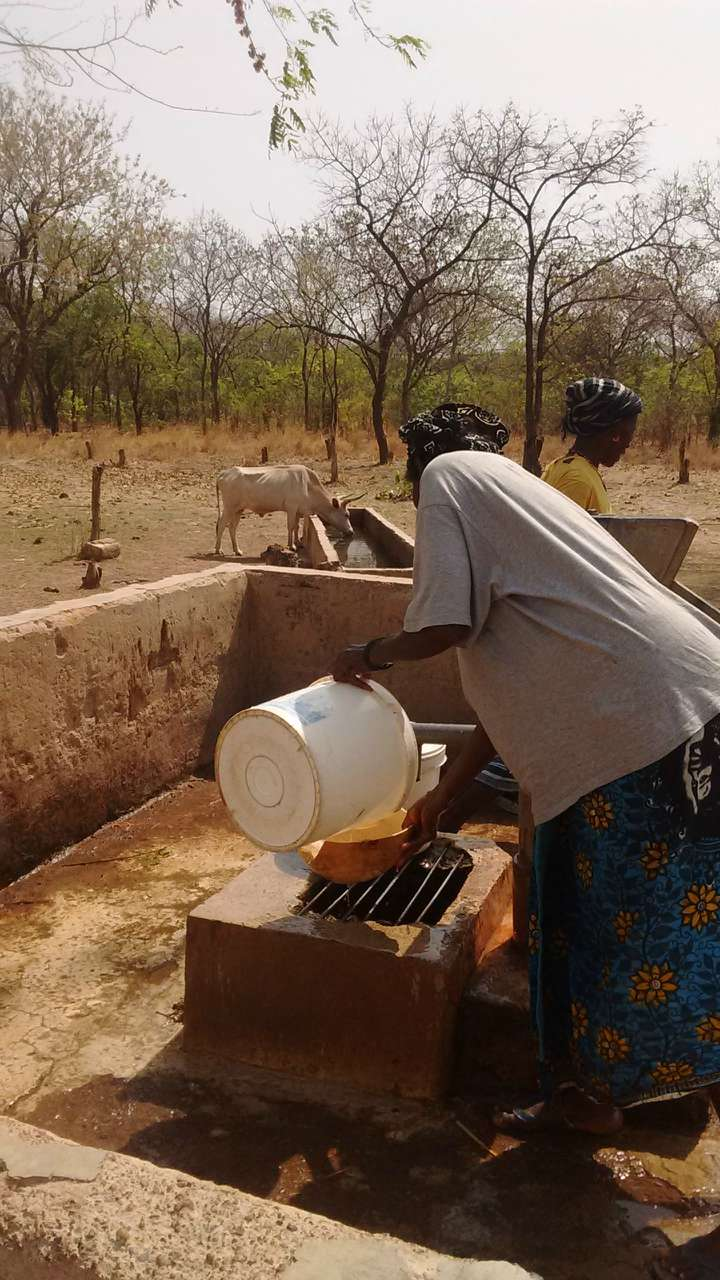 Conclusion of Hamdalaye Well Rehab Project - Senegal