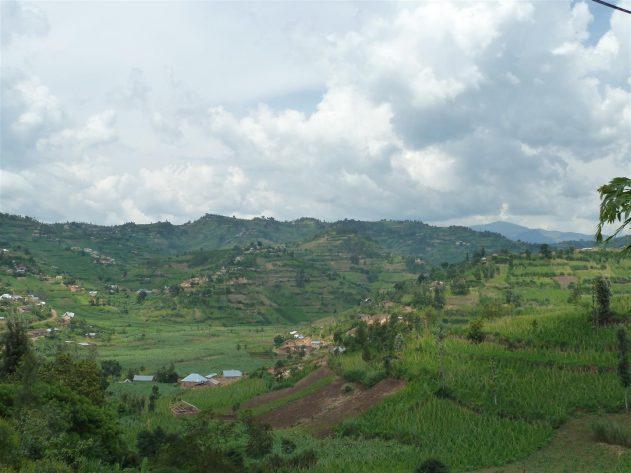 Gisenyi Rainwater Catchment System & Ferro-Cement Tank Training Program - Rwanda