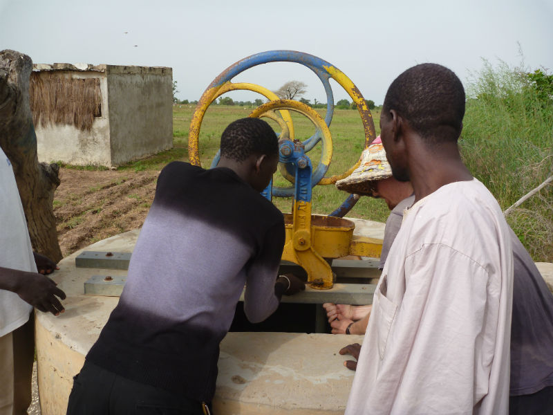 52 Pumps in 52 Weeks – Senegal – Project 12 - Dantaxoune
