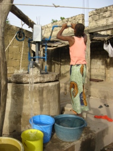 Conclusion of 52 Pumps in 52 Weeks – Senegal – Project 21 - Sincan Samba Koulibaly, Urban Garden