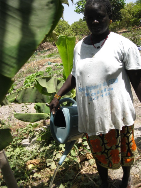 52 Pumps in 52 Weeks – Senegal – Project 22 - Thiewol Lao, Master Farm