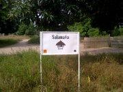 52 Pumps in 52 Weeks – Senegal – Project 28 - Sare Salamata, Master Farm