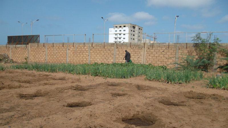 52 Pumps in 52 Weeks – Senegal – Project 8 - Hann Maristes Youth Prison, Dakar