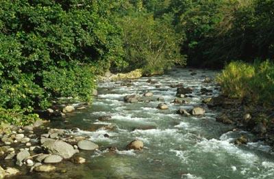 River - Dominican Republic