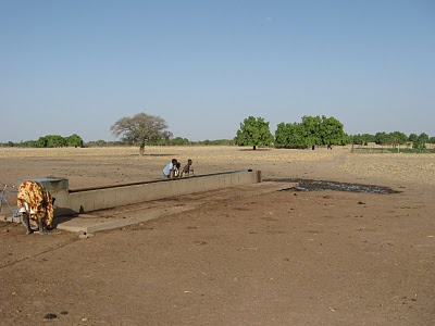 Water Trough - Mali