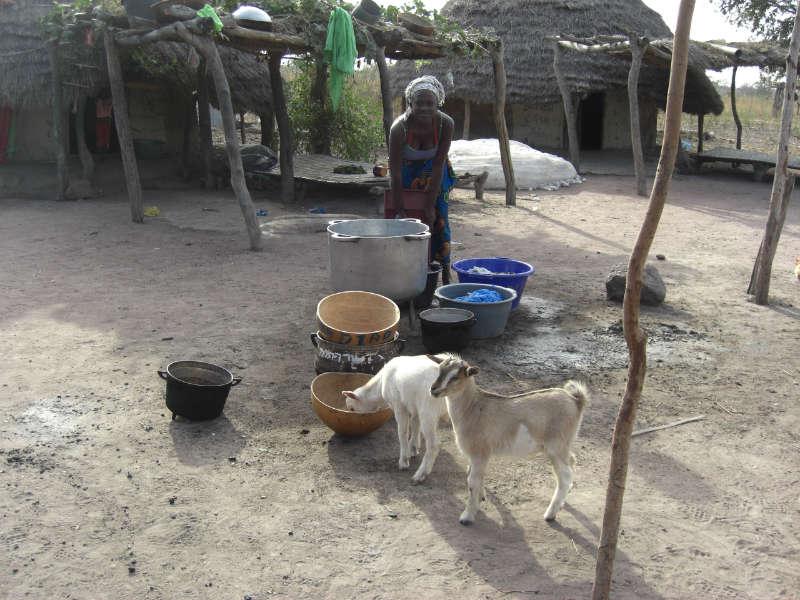 Goundaga and Lengewal Latrine Project - Senegal