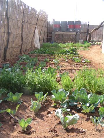 Namibia Garden