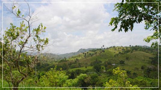 Dominican Republic Scenery