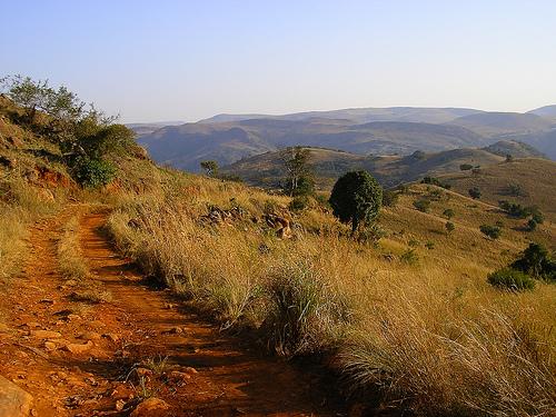 Swaziland Landscape