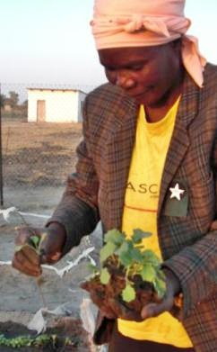 Conclusion of Community Garden for People Living With HIV – Botswana
