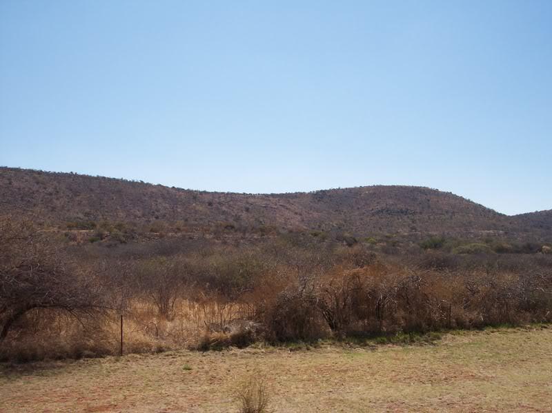 Botswana Landscape