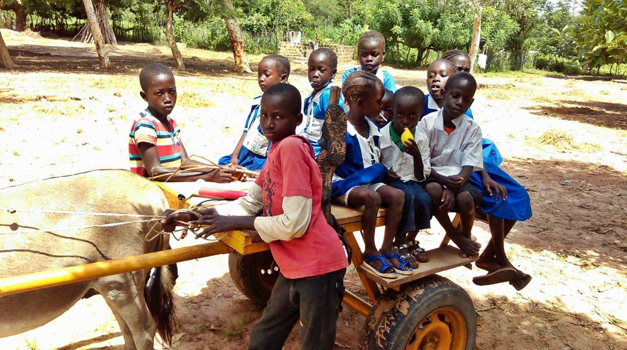 St. Matthew's School Water Project - The Gambia
